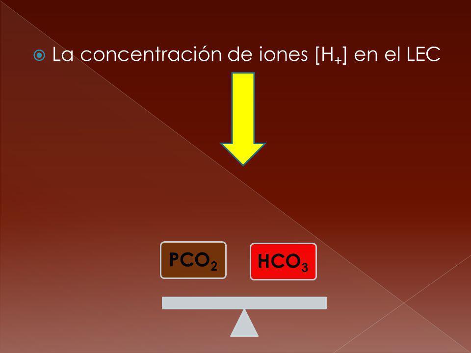 La concentración de iones [H + ] en el LEC PCO2 HCO 3