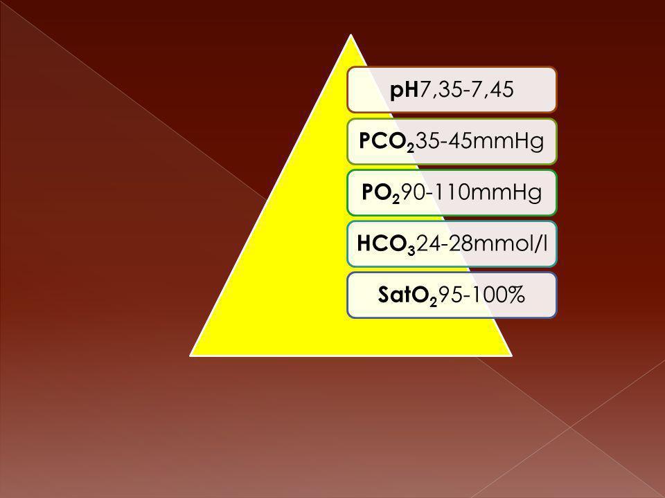 pH 7,35-7,45 PCO2 35-45mmHg PO2 90-110mmHg HCO3 24-28mmol/l SatO2 95-100%