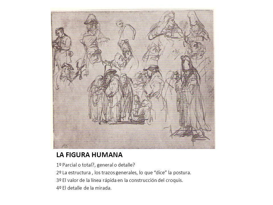 LA FIGURA HUMANA 1º Parcial o total?, general o detalle.