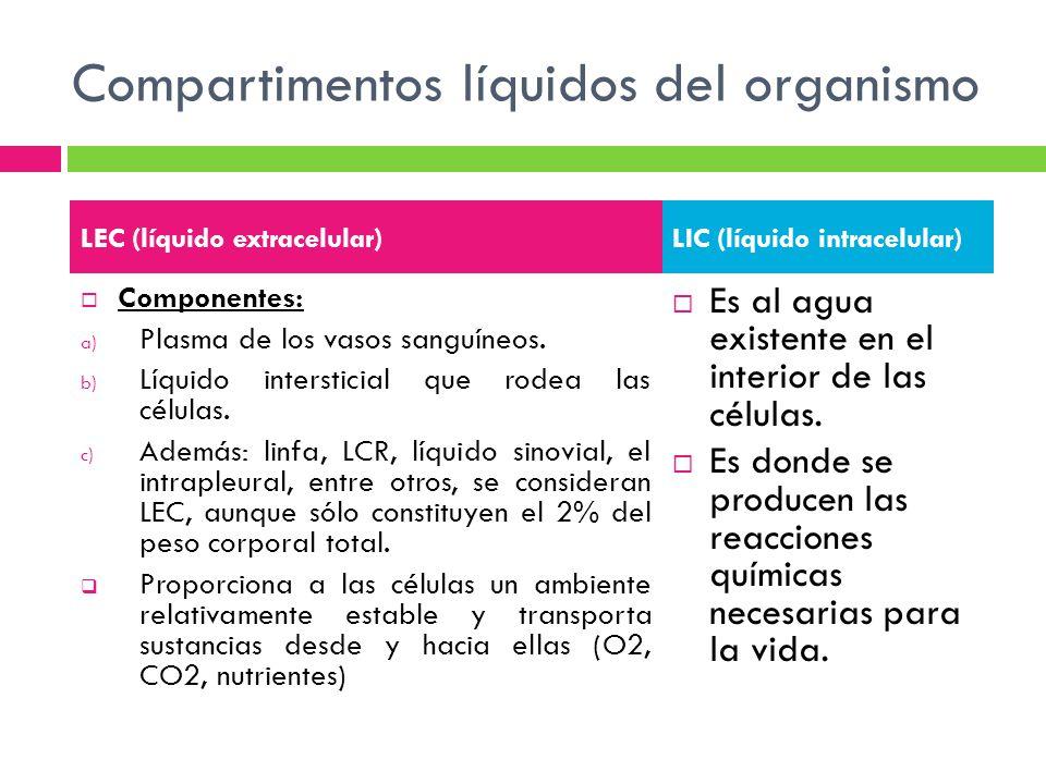 Compartimentos líquidos del organismo Componentes: a) Plasma de los vasos sanguíneos. b) Líquido intersticial que rodea las células. c) Además: linfa,