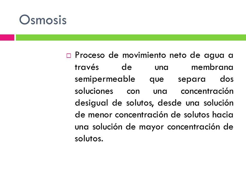 Osmosis Proceso de movimiento neto de agua a través de una membrana semipermeable que separa dos soluciones con una concentración desigual de solutos, desde una solución de menor concentración de solutos hacia una solución de mayor concentración de solutos.