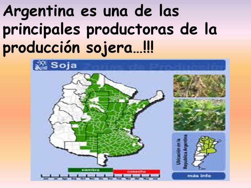 Argentina es una de las principales productoras de la producción sojera…!!!