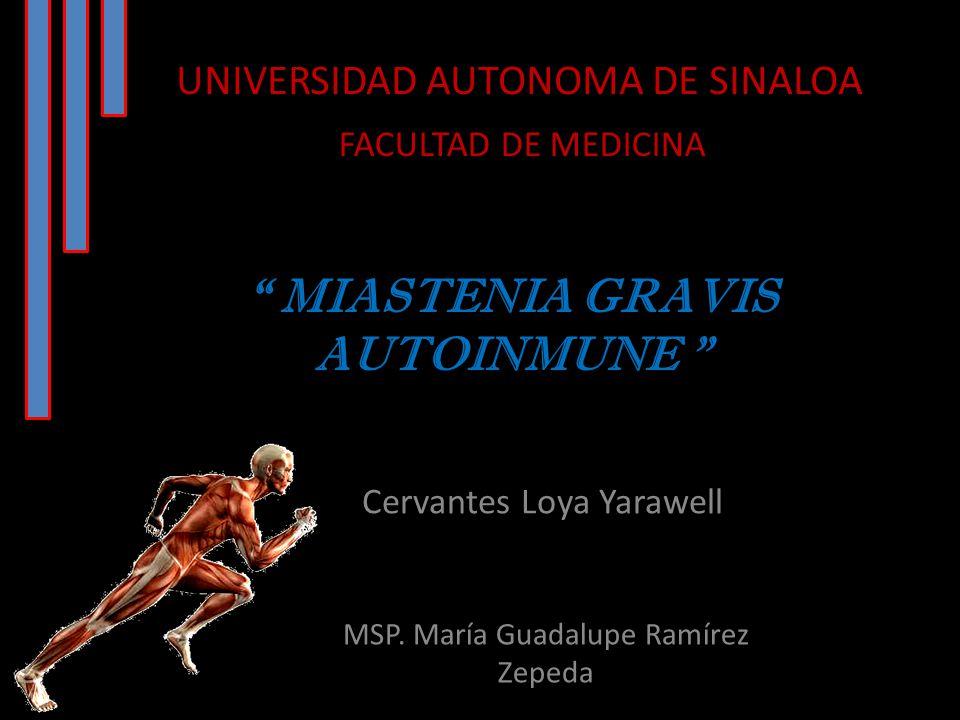 MIASTENIA GRAVIS AUTOINMUNE Cervantes Loya Yarawell UNIVERSIDAD AUTONOMA DE SINALOA FACULTAD DE MEDICINA MSP.