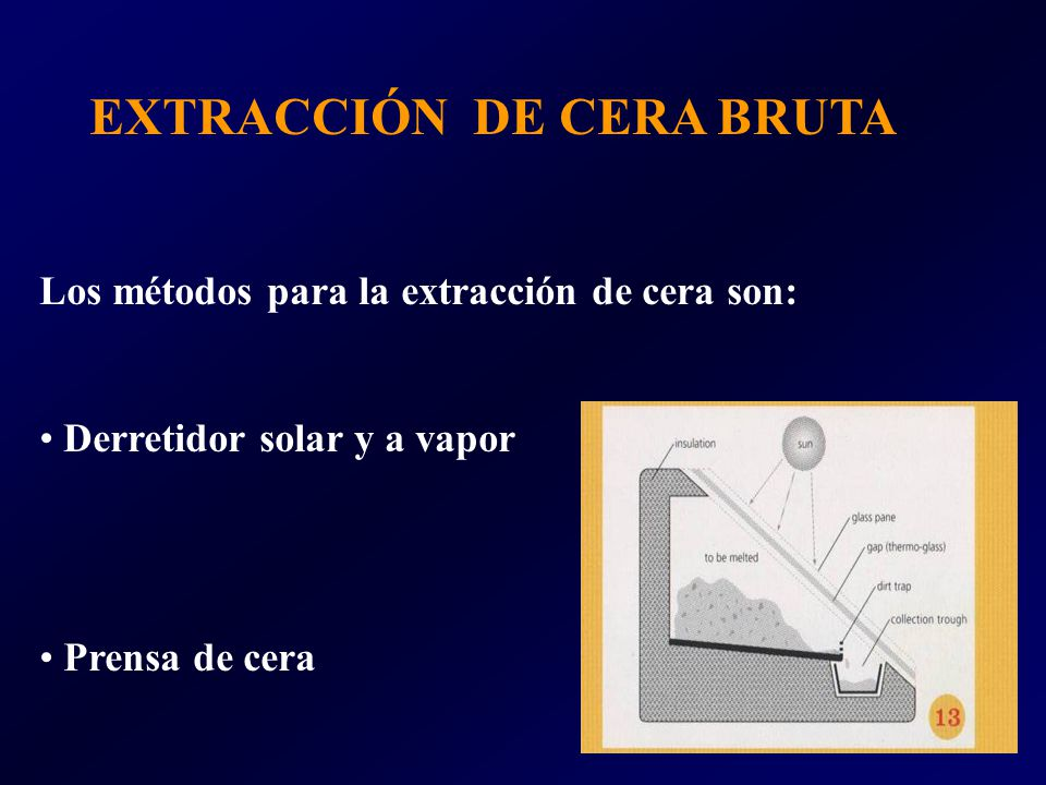 EXTRACCIÓN DE CERA BRUTA Los métodos para la extracción de cera son: Derretidor solar y a vapor Prensa de cera
