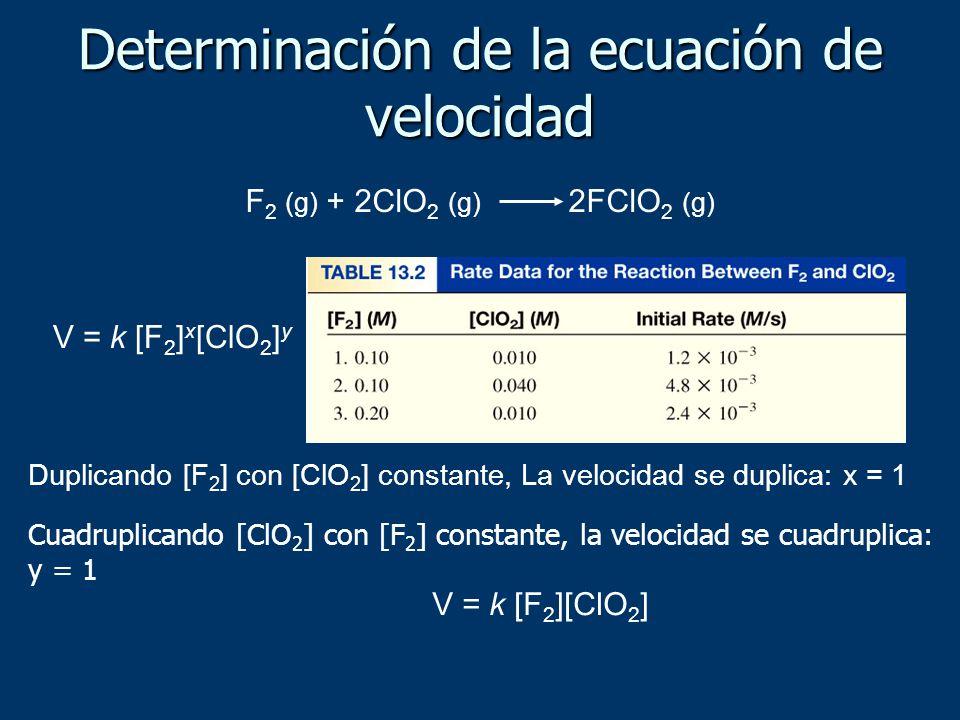 Determinación de la ecuación de velocidad F 2 (g) + 2ClO 2 (g) 2FClO 2 (g) V = k [F 2 ] x [ClO 2 ] y Duplicando [F 2 ] con [ClO 2 ] constante, La velo