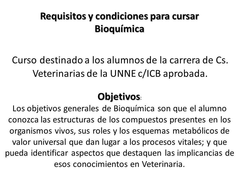 Apellido y NombresCargo DocenteDedicación Dra. GLADIS LILIA SANDOVAL Prof.