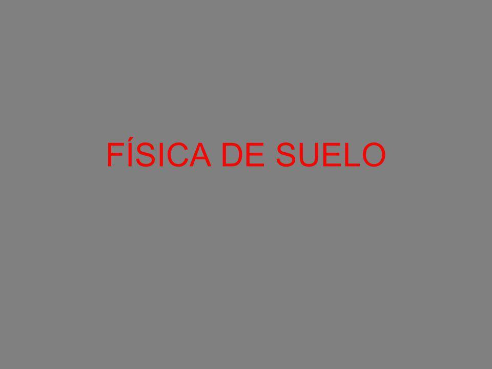 FÍSICA DE SUELO