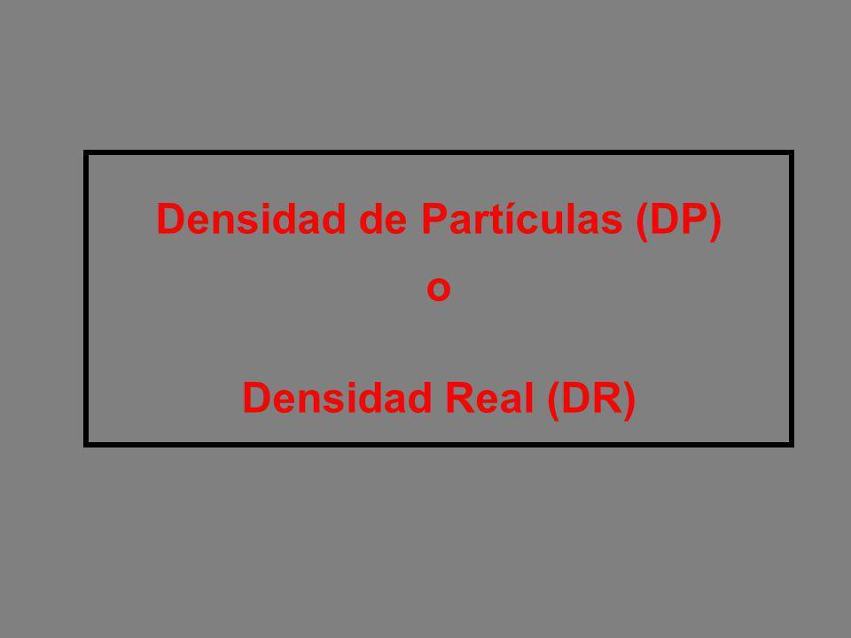 Densidad de Partículas (DP) o Densidad Real (DR)
