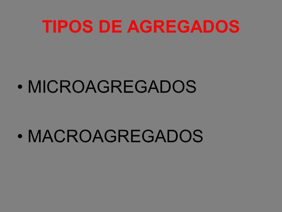 TIPOS DE AGREGADOS MICROAGREGADOS MACROAGREGADOS
