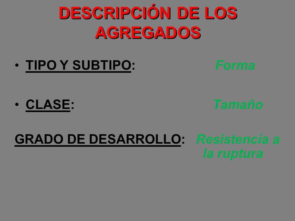 DESCRIPCIÓN DE LOS AGREGADOS TIPO Y SUBTIPO: Forma CLASE: Tamaño GRADO DE DESARROLLO: Resistencia a la ruptura