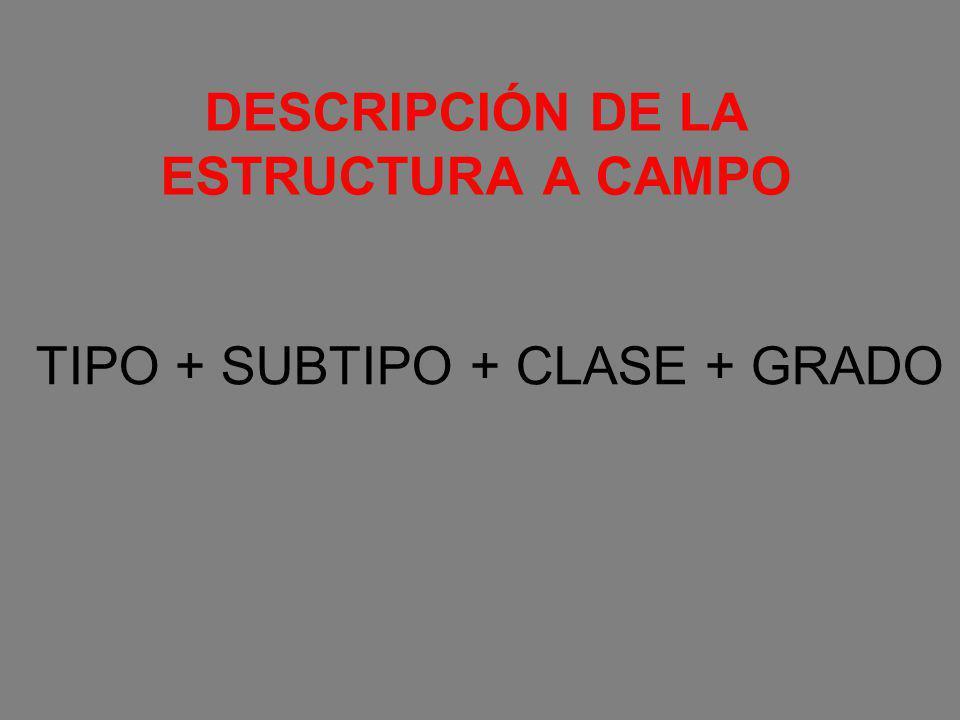 DESCRIPCIÓN DE LA ESTRUCTURA A CAMPO TIPO + SUBTIPO + CLASE + GRADO