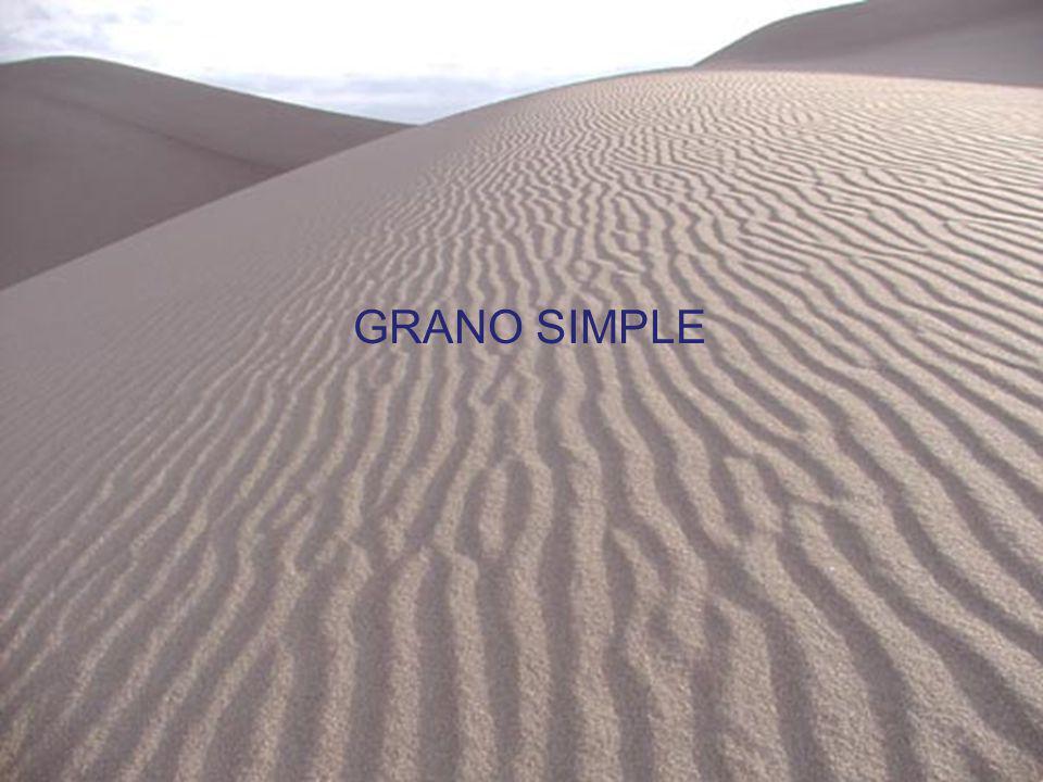 GRANO SIMPLE