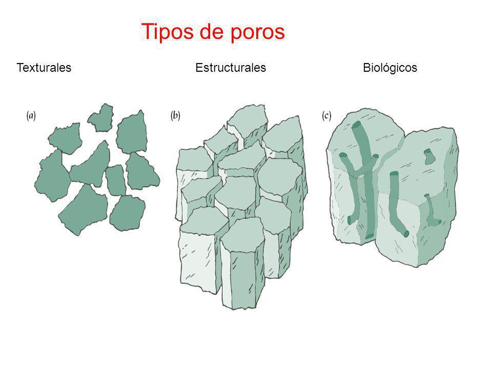 Tipos de poros Texturales Estructurales Biológicos