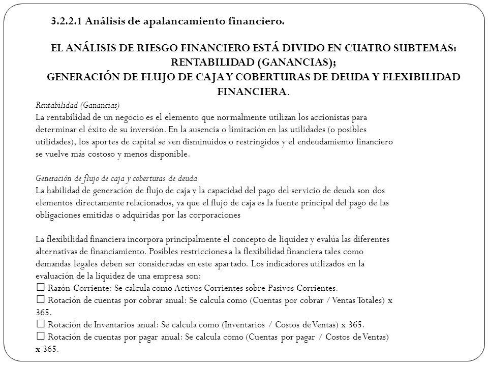 3.2.2.1 Análisis de apalancamiento financiero. EL ANÁLISIS DE RIESGO FINANCIERO ESTÁ DIVIDO EN CUATRO SUBTEMAS: RENTABILIDAD (GANANCIAS); GENERACIÓN D