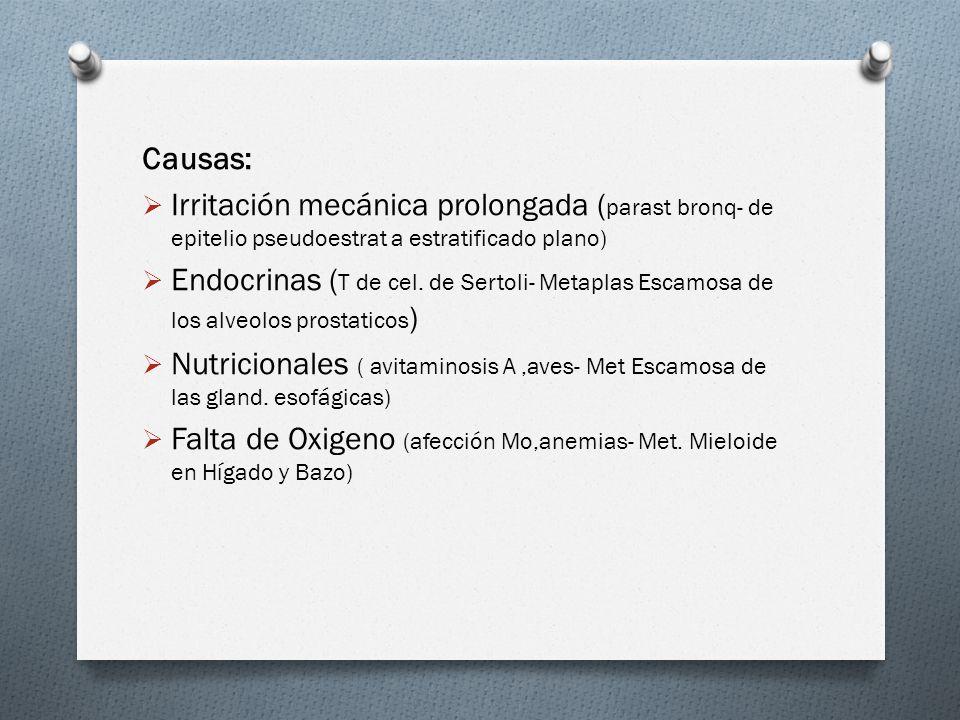 Causas: Irritación mecánica prolongada ( parast bronq- de epitelio pseudoestrat a estratificado plano) Endocrinas ( T de cel. de Sertoli- Metaplas Esc