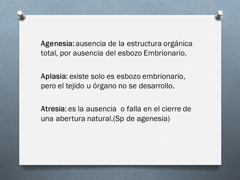 Agenesia: ausencia de la estructura orgánica total, por ausencia del esbozo Embrionario. Aplasia: existe solo es esbozo embrionario, pero el tejido u