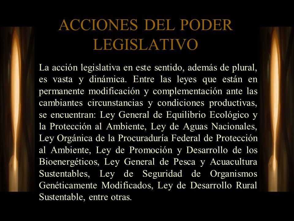 ACCIONES DEL PODER LEGISLATIVO La acción legislativa en este sentido, además de plural, es vasta y dinámica. Entre las leyes que están en permanente m