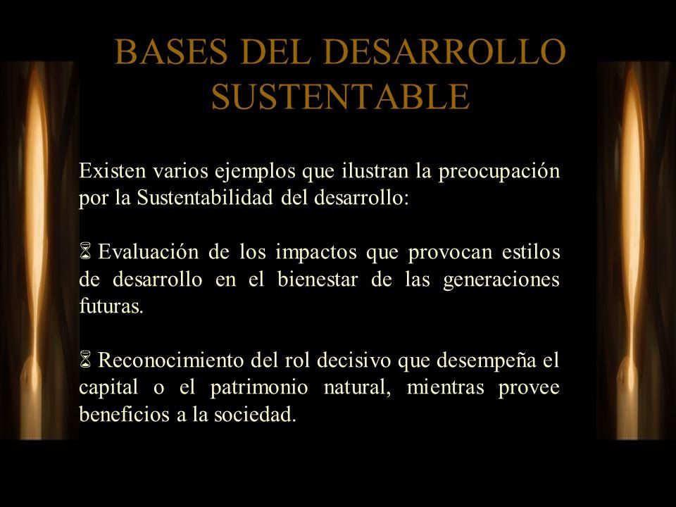 BASES DEL DESARROLLO SUSTENTABLE Existen varios ejemplos que ilustran la preocupación por la Sustentabilidad del desarrollo: Evaluación de los impacto