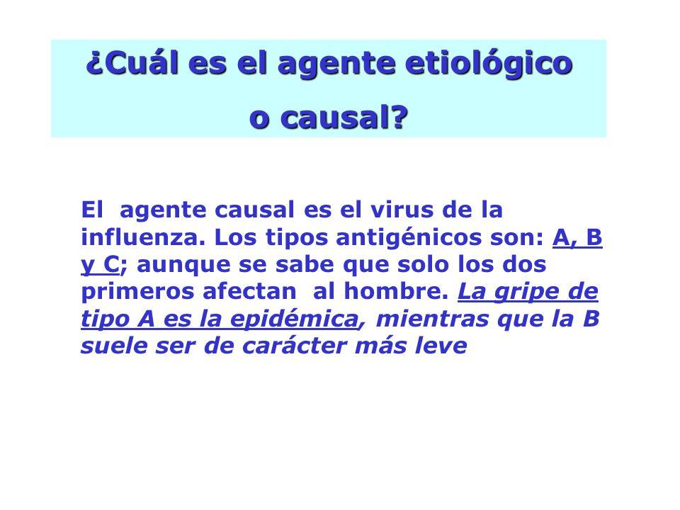 El agente causal es el virus de la influenza. Los tipos antigénicos son: A, B y C; aunque se sabe que solo los dos primeros afectan al hombre. La grip