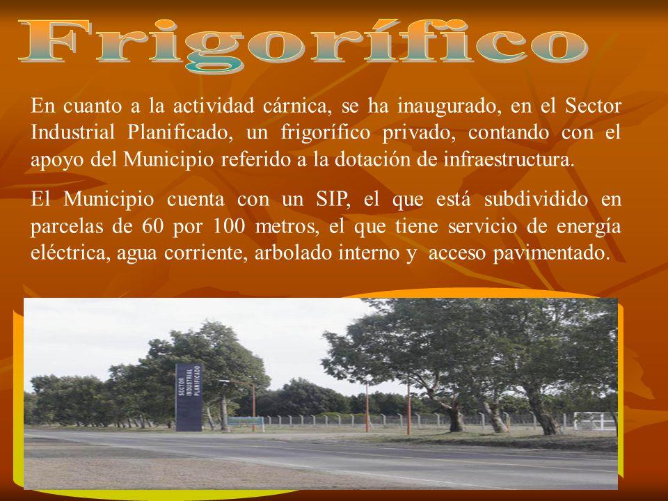 En cuanto a la actividad cárnica, se ha inaugurado, en el Sector Industrial Planificado, un frigorífico privado, contando con el apoyo del Municipio referido a la dotación de infraestructura.