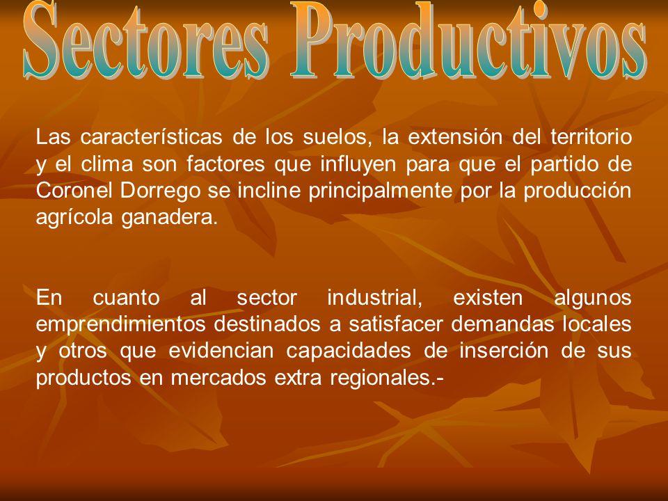 Las características de los suelos, la extensión del territorio y el clima son factores que influyen para que el partido de Coronel Dorrego se incline principalmente por la producción agrícola ganadera.