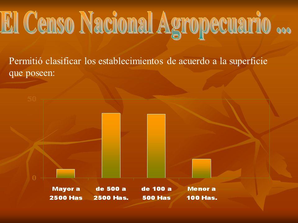 La firma posee dos plantaciones de olivo: La planta está ubicada en Aparicio, en el Km.550 de la Ruta Nacional 3; donde se elabora aceite orgánico de la más alta calidad.