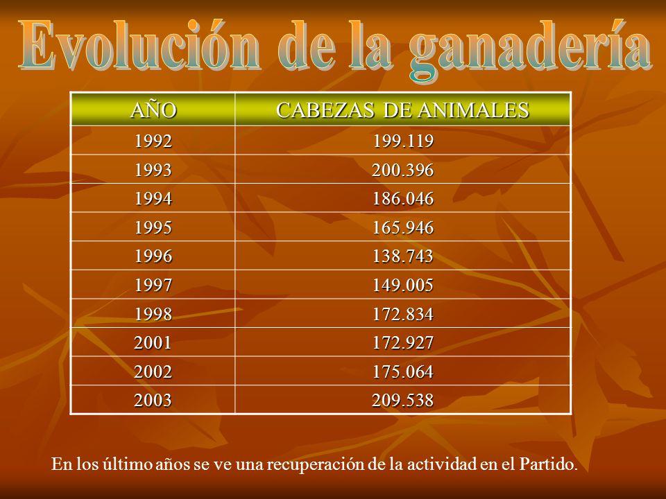 AÑO CABEZAS DE ANIMALES 1992199.119 1993200.396 1994186.046 1995165.946 1996138.743 1997149.005 1998172.834 2001172.927 2002175.064 2003209.538 En los