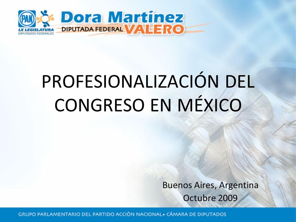 PROFESIONALIZACIÓN DEL CONGRESO EN MÉXICO Buenos Aires, Argentina Octubre 2009