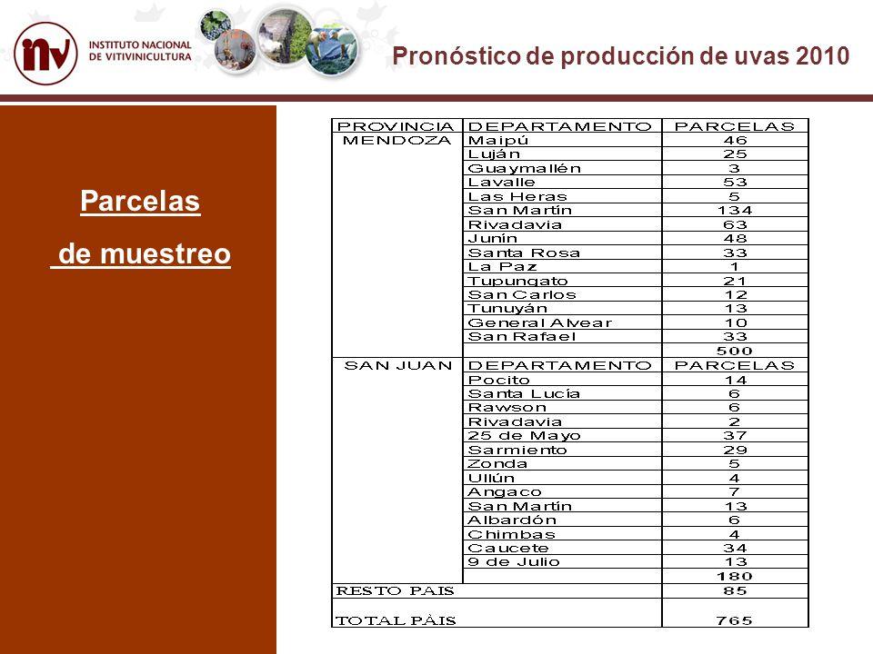 Pronóstico de producción de uvas 2010 Parcelas de muestreo