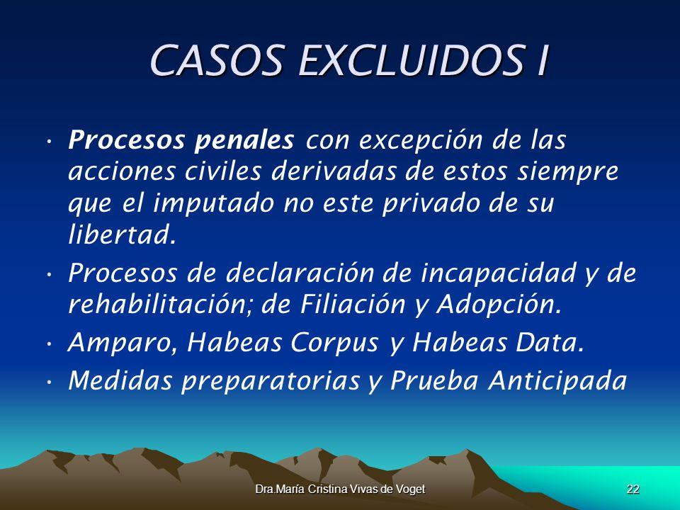 Dra.María Cristina Vivas de Voget22 CASOS EXCLUIDOS I CASOS EXCLUIDOS I Procesos penales con excepción de las acciones civiles derivadas de estos siem