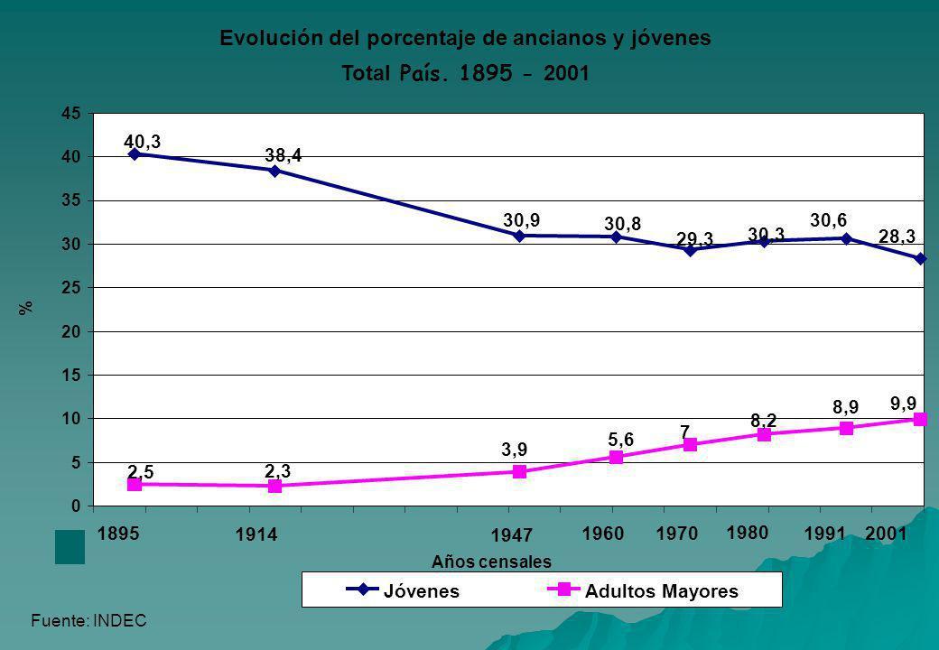 Evolución del porcentaje de ancianos y jóvenes Total País. 1895 - 2001 28,3 30,6 30,3 29,3 30,8 30,9 38,4 40,3 9,9 8,9 8,2 7 5,6 3,9 2,3 2,5 0 5 10 15