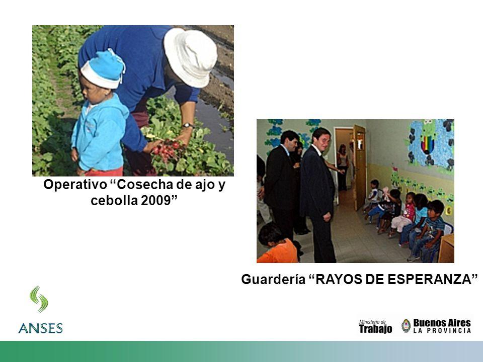 Operativo Cosecha de ajo y cebolla 2009 Guardería RAYOS DE ESPERANZA