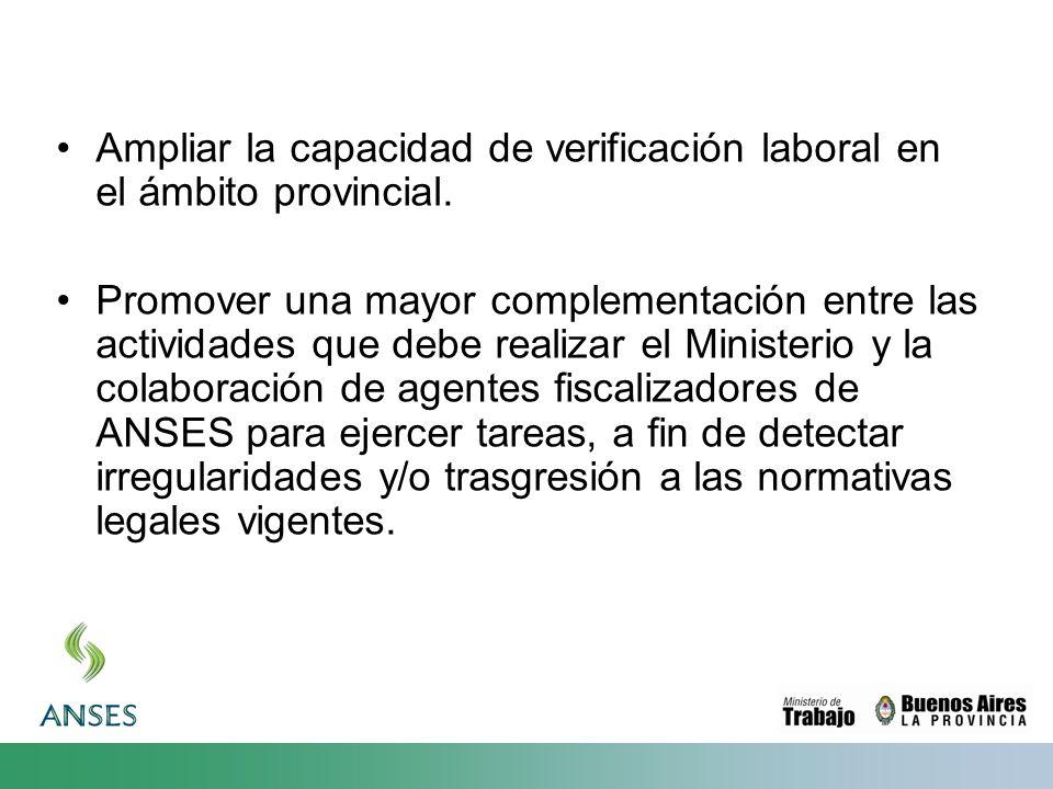 Ampliar la capacidad de verificación laboral en el ámbito provincial. Promover una mayor complementación entre las actividades que debe realizar el Mi