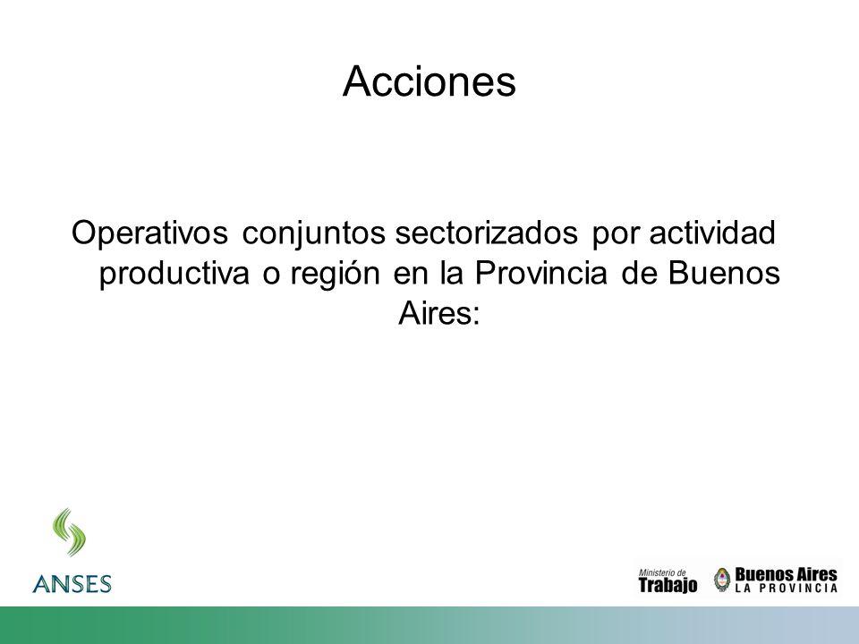 Acciones Operativos conjuntos sectorizados por actividad productiva o región en la Provincia de Buenos Aires: