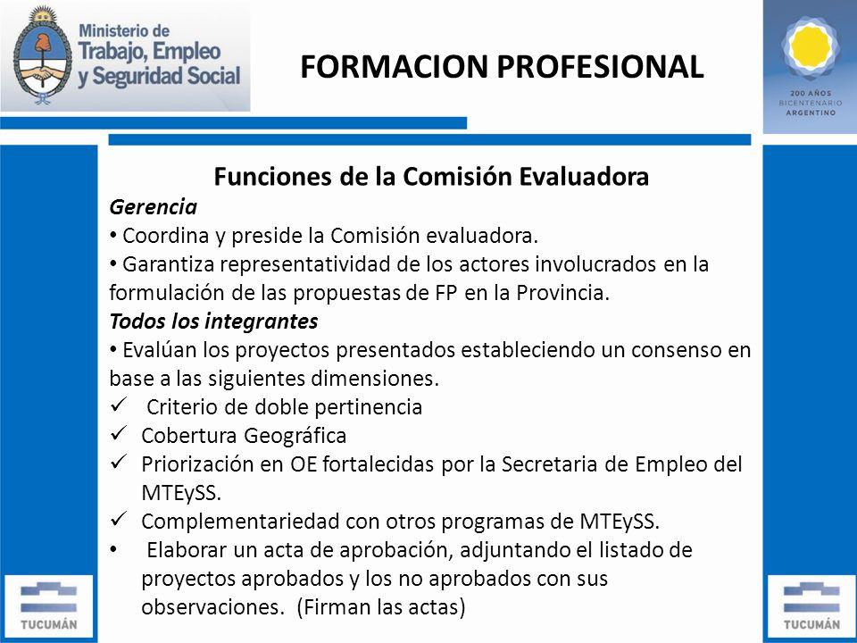 Funciones de la Comisión Evaluadora Gerencia Coordina y preside la Comisión evaluadora.