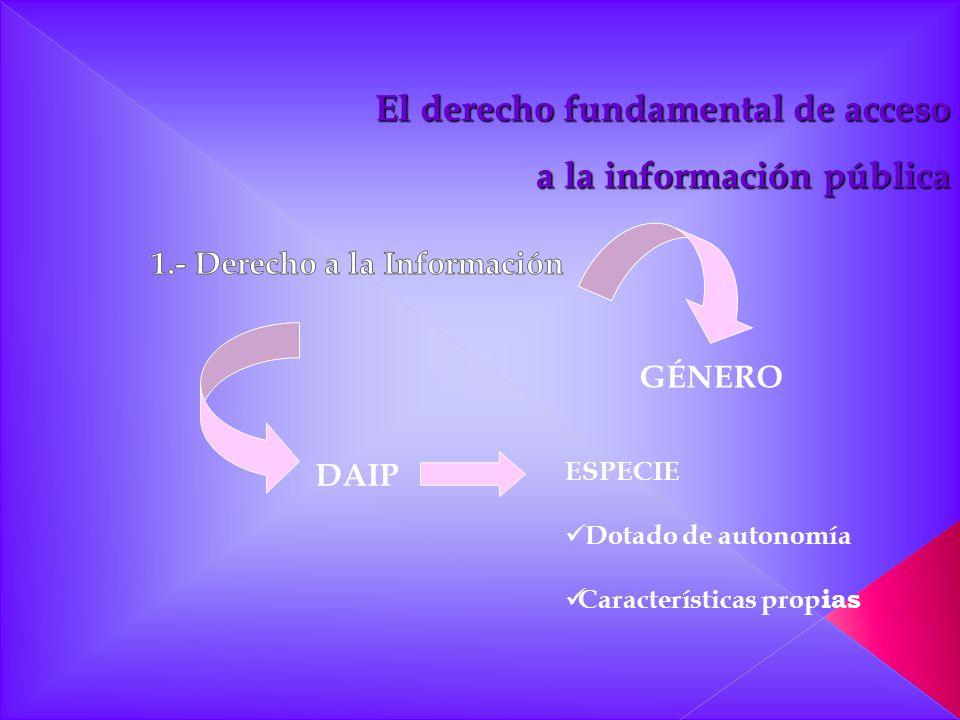 GÉNERO DAIP ESPECIE Dotado de autonomía Características prop ias El derecho fundamental de acceso a la información pública