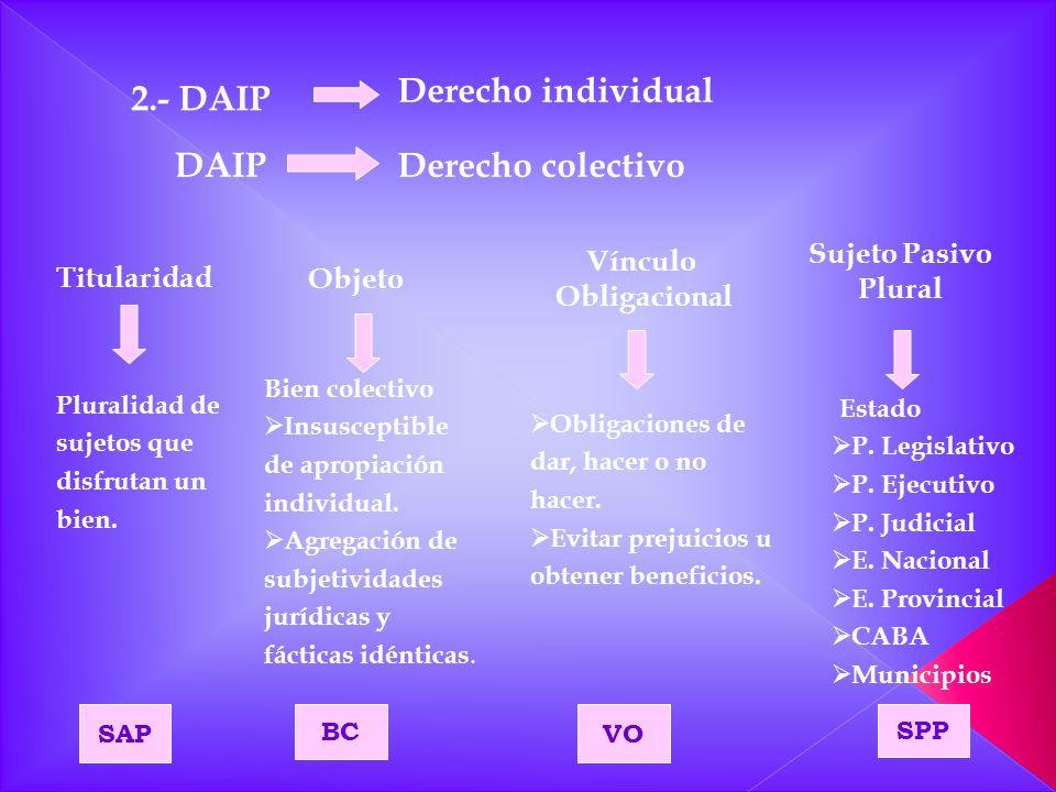 Derecho individual DAIP Derecho colectivo Titularidad Objeto Vínculo Obligacional Sujeto Pasivo Plural Pluralidad de sujetos que disfrutan un bien. Bi