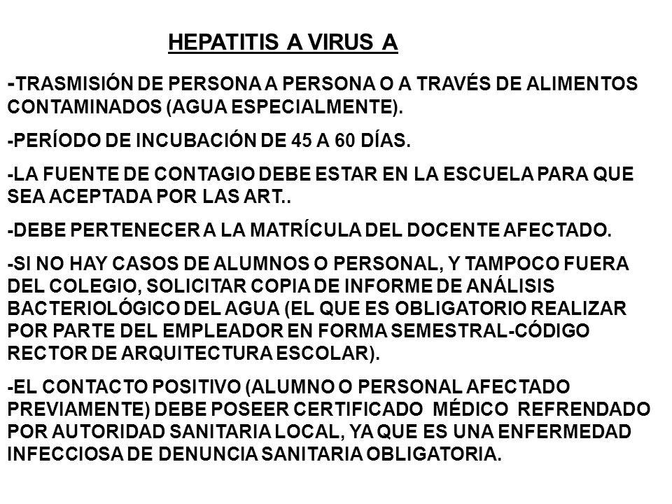 HEPATITIS A VIRUS A - TRASMISIÓN DE PERSONA A PERSONA O A TRAVÉS DE ALIMENTOS CONTAMINADOS (AGUA ESPECIALMENTE).