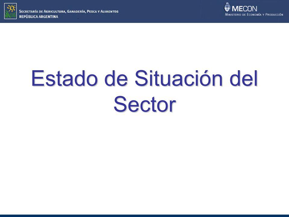 Estado de Situación del Sector