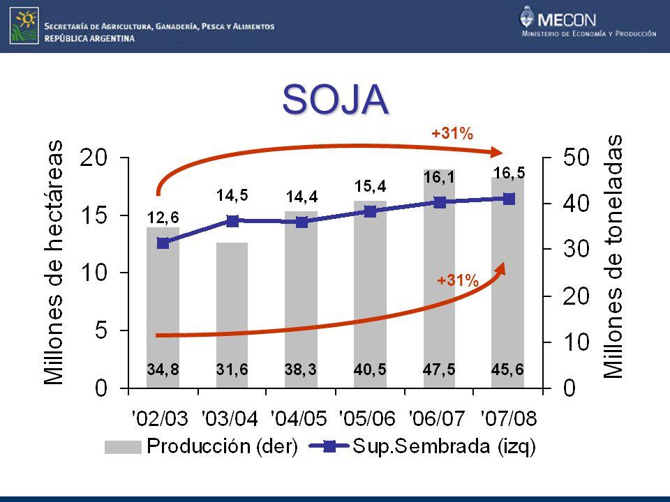 SOJA +31%