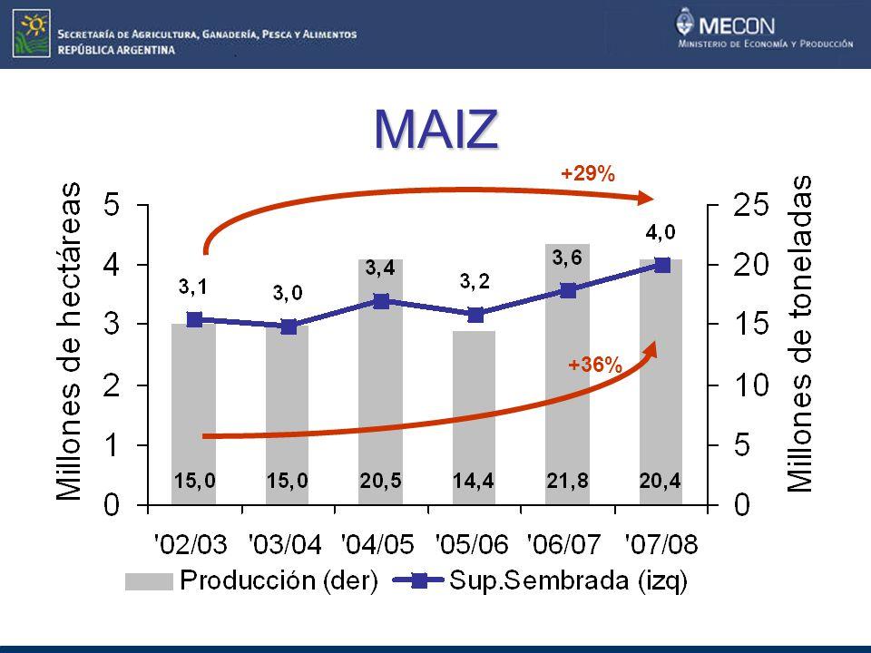 MAIZ +36% +29%