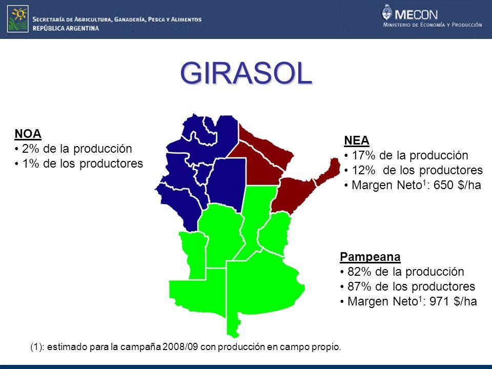 GIRASOL NOA 2% de la producción 1% de los productores NEA 17% de la producción 12% de los productores Margen Neto 1 : 650 $/ha Pampeana 82% de la producción 87% de los productores Margen Neto 1 : 971 $/ha (1): estimado para la campaña 2008/09 con producción en campo propio.