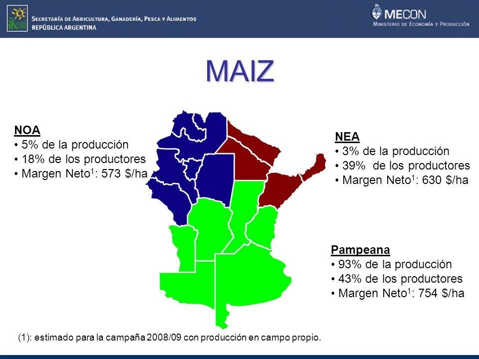 MAIZ NOA 5% de la producción 18% de los productores Margen Neto 1 : 573 $/ha NEA 3% de la producción 39% de los productores Margen Neto 1 : 630 $/ha Pampeana 93% de la producción 43% de los productores Margen Neto 1 : 754 $/ha (1): estimado para la campaña 2008/09 con producción en campo propio.
