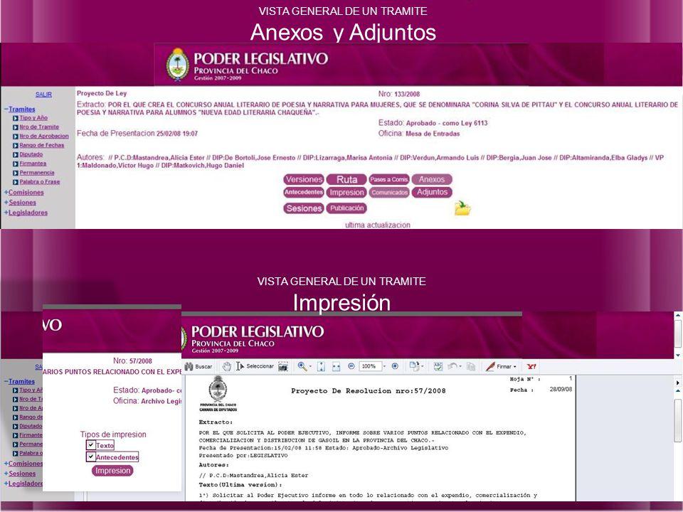 VISTA GENERAL DE UN TRAMITE Anexos y Adjuntos VISTA GENERAL DE UN TRAMITE Impresión