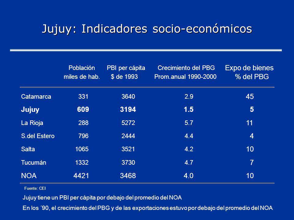 Jujuy: Indicadores socio-económicos PoblaciónPBI per cápitaCrecimiento del PBG Expo de bienes miles de hab.$ de 1993Prom.anual 1990-2000 % del PBG Catamarca33136402.9 45 Jujuy60931941.55 La Rioja28852725.7 11 S.del Estero79624444.4 4 Salta106535214.2 10 Tucumán133237304.7 7 NOA442134684.010 Fuente: CEI Jujuy tiene un PBI per cápita por debajo del promedio del NOA En los ´90, el crecimiento del PBG y de las exportaciones estuvo por debajo del promedio del NOA