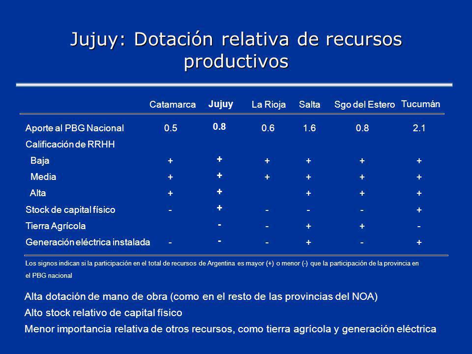 Jujuy: Dotación relativa de recursos productivos Alta dotación de mano de obra (como en el resto de las provincias del NOA) Alto stock relativo de capital físico Menor importancia relativa de otros recursos, como tierra agrícola y generación eléctrica Catamarca Jujuy La RiojaSaltaSgo del Estero Tucumán Aporte al PBG Nacional0.5 0.8 0.61.60.82.1 Calificación de RRHH Baja+ + ++++ Media+ + ++++ Alta+ + +++ Stock de capital físico- + ---+ Tierra Agrícola - -++- Generación eléctrica instalada- - -+-+ Los signos indican si la participación en el total de recursos de Argentina es mayor (+) o menor (-) que la participación de la provincia en el PBG nacional