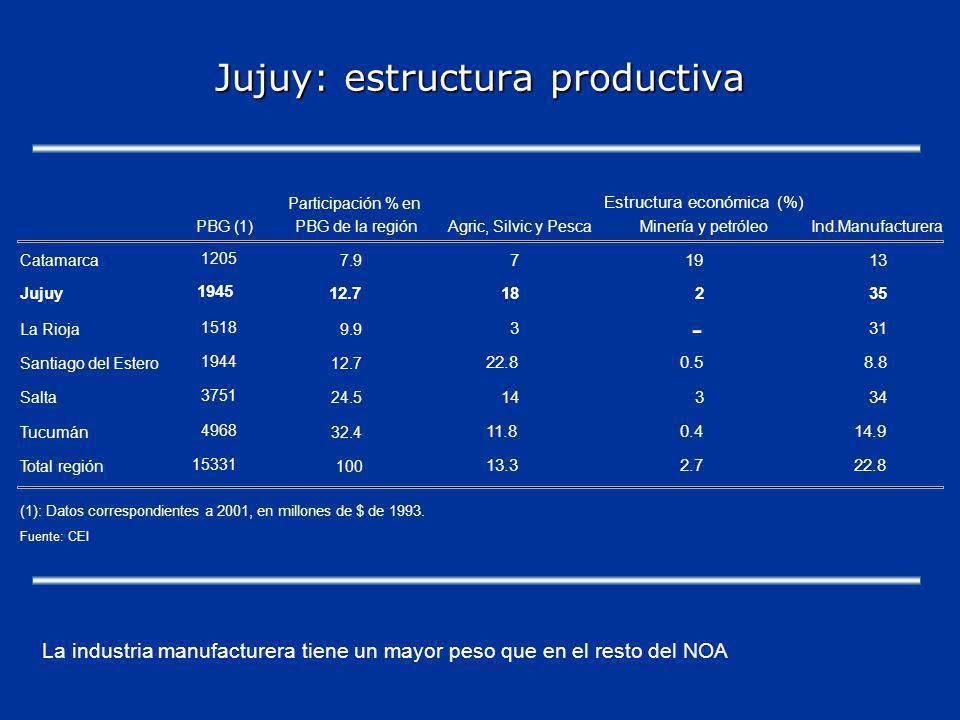Jujuy: estructura productiva Participación % en PBG (1)PBG de la regiónAgric, Silvic y PescaMinería y petróleoInd.Manufacturera Catamarca 1205 7.9 71913 Jujuy 1945 12.718235 La Rioja 1518 9.9 331 Santiago del Estero 1944 12.7 22.80.58.8 Salta 3751 24.5 14334 Tucumán 4968 32.4 11.80.414.9 Total región 15331 100 13.32.722.8 (1): Datos correspondientes a 2001, en millones de $ de 1993.