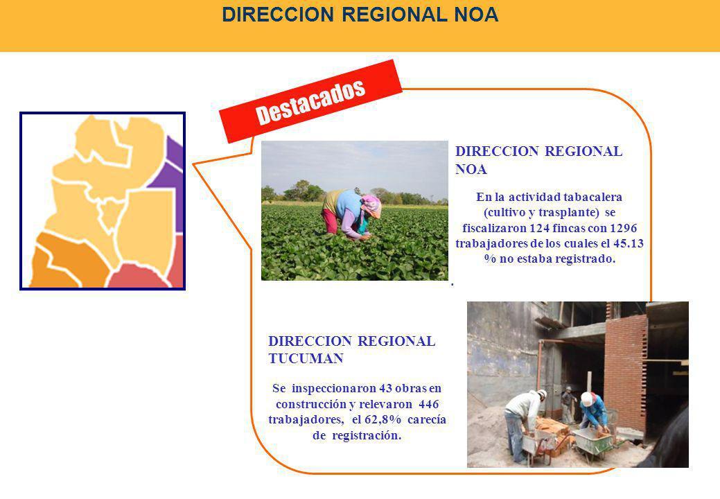 DIRECCION REGIONAL NOA. Destacados DIRECCION REGIONAL NOA En la actividad tabacalera (cultivo y trasplante) se fiscalizaron 124 fincas con 1296 trabaj