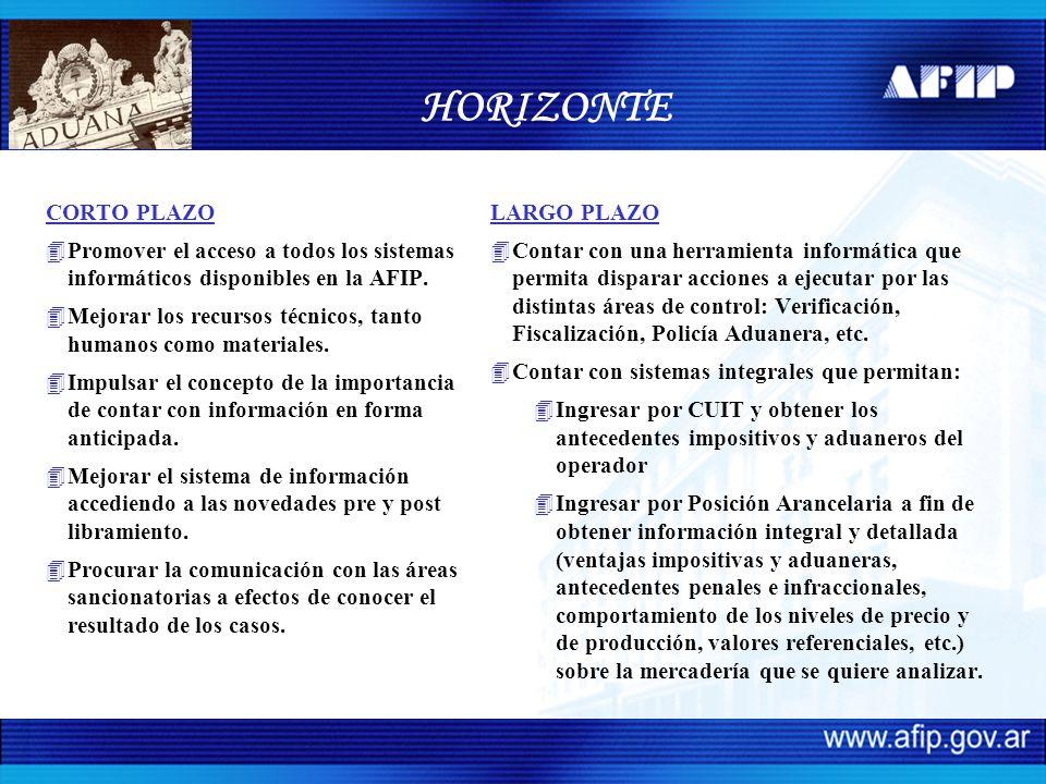 HORIZONTE CORTO PLAZO 4Promover el acceso a todos los sistemas informáticos disponibles en la AFIP. 4Mejorar los recursos técnicos, tanto humanos como