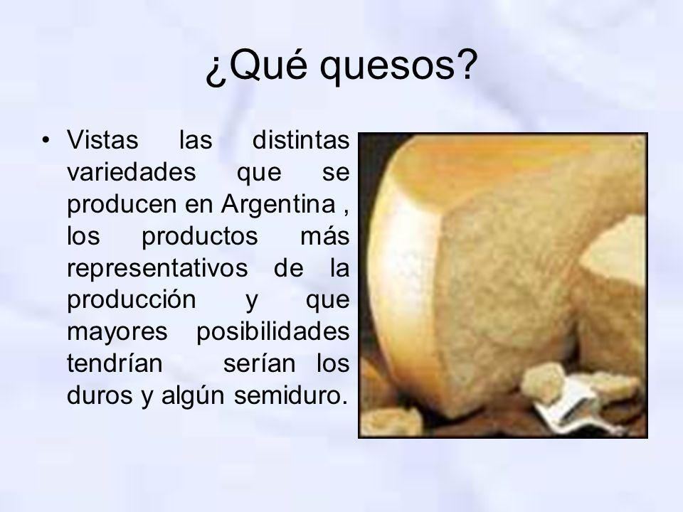 ¿Qué quesos? Vistas las distintas variedades que se producen en Argentina, los productos más representativos de la producción y que mayores posibilida
